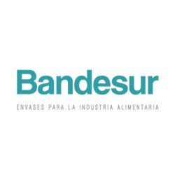 Bandesur Alcalá S.S.